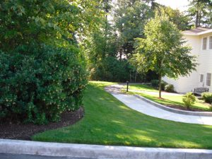 Lush, green residential lawn. Boulder Falls provides quality landscape maintenance services in Vancouver WA and Camas WA.