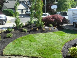 Landscape lawn. Boulder Falls provides quality landscaping in Vancouver WA and Camas WA