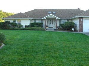 Lawn Installation Sod Installation New Lawn Installation Services